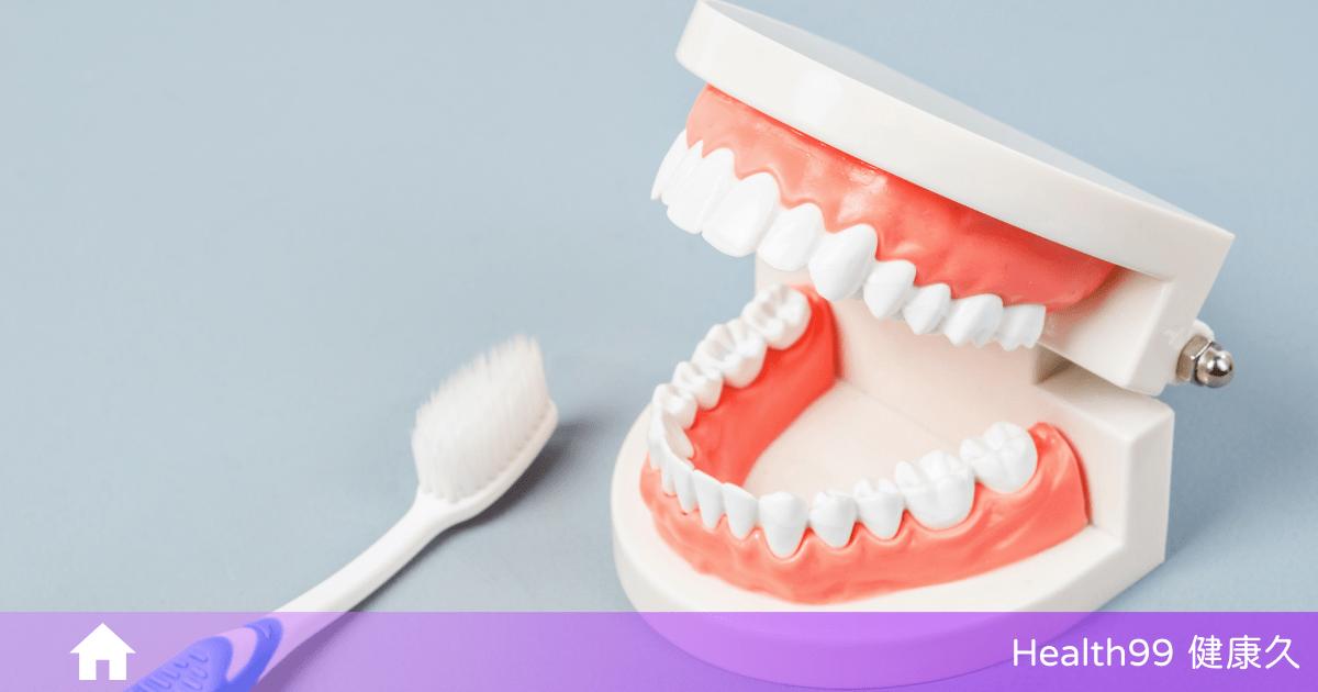 假牙要怎麼清潔?活動式假牙的正確清潔方法!常保假牙的清潔!